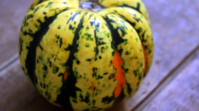 Carnival squash is just one of the many kinds of winter squash to cook this fall and winter.
